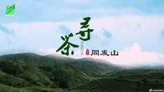 《寻茶:同发山》